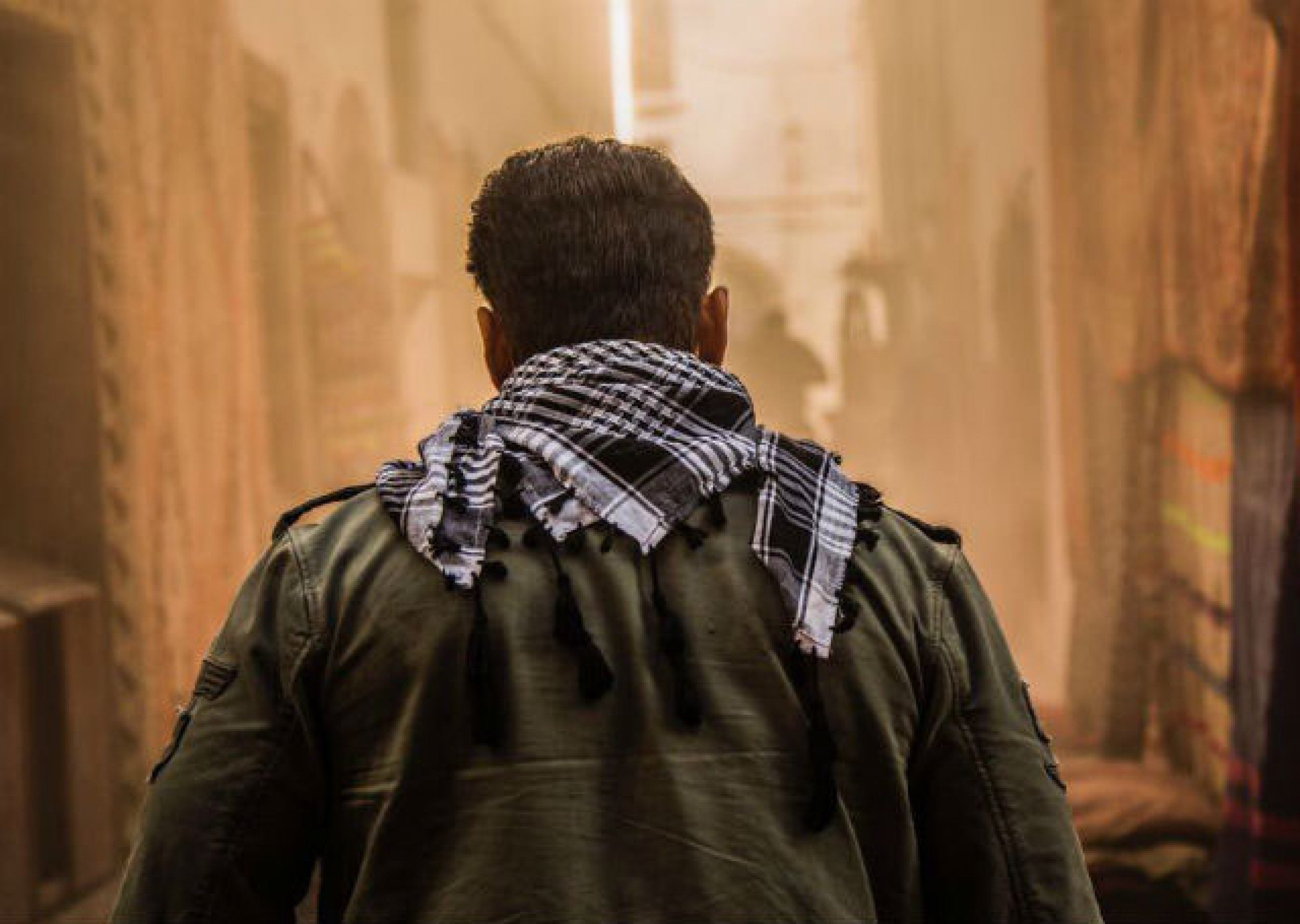 tiger zinda hai new movie 2017 download full hd