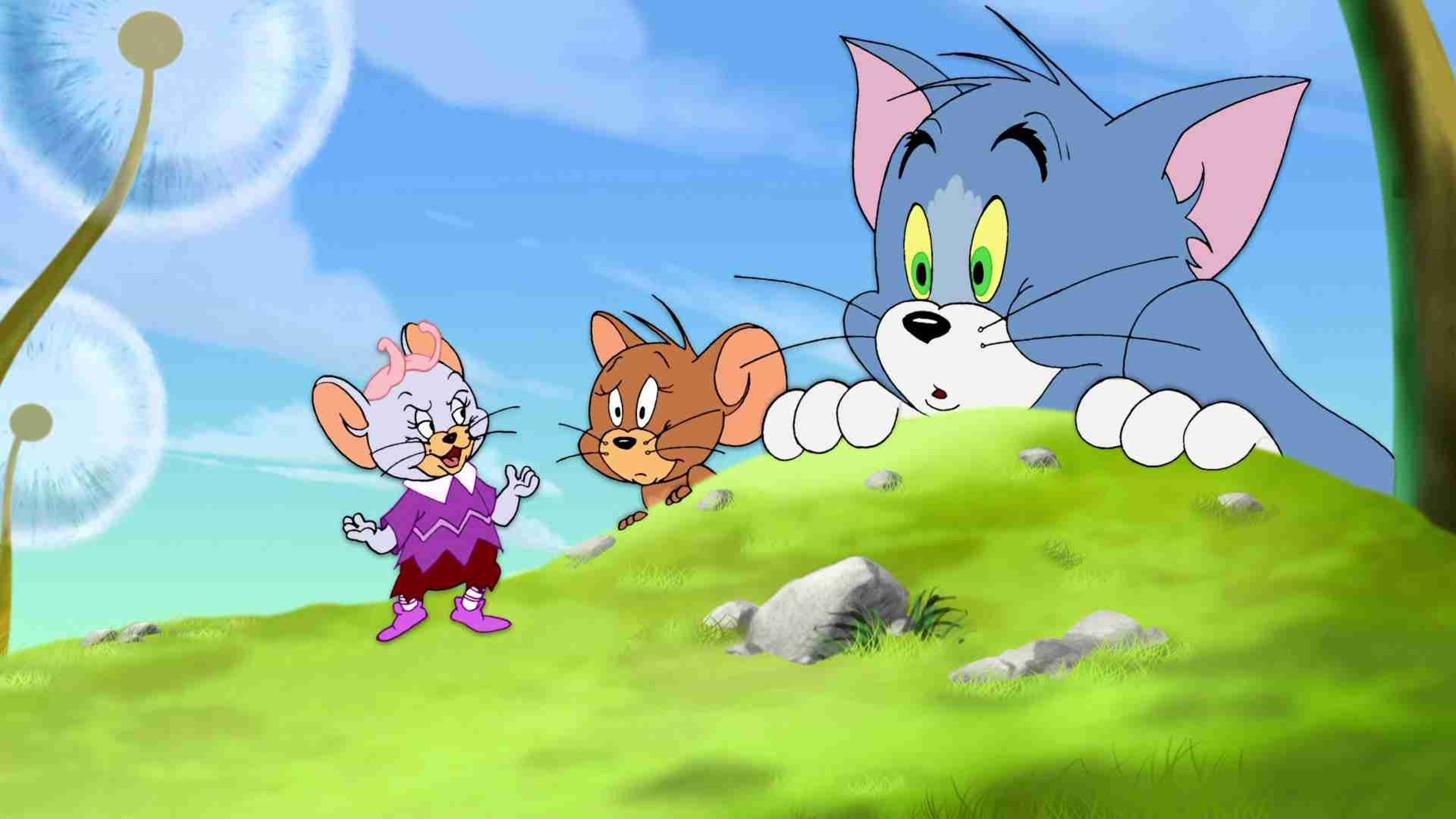Tom And Jerry Cartoon Grass Hd Wallpapers Freshwidewallpapers
