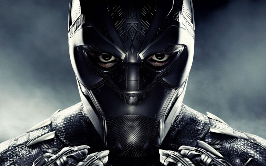 Black Panther Hollywood Movie 5k Wide Wallpapers