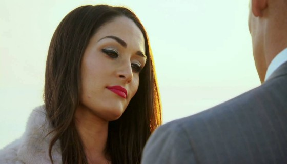 Nikki Bella John Cena hd wallp…