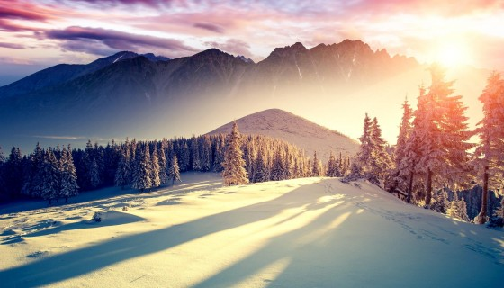 mountains trees ice snow beaut…