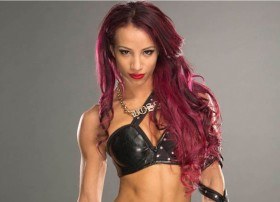 Sasha banks wwe divas hot stylist pose images