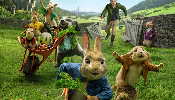 peter rabbit  movie 2018 5k wi…
