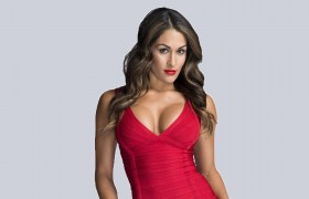 nikki bella red dress wwe diva…